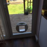 Cat Flap In Door IOW