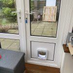 Infill with catflap IW